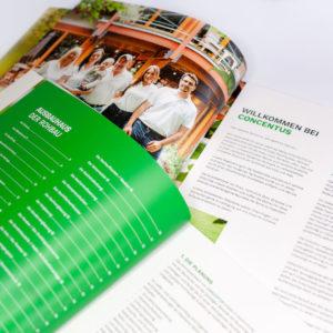 Concentus Fachwerkhaus Imagebroschuere Baubeschreibung Druckerei Broschuere Katalog Layout 190