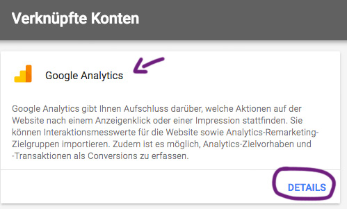 Google Ads Websitemesswerte Importieren 3