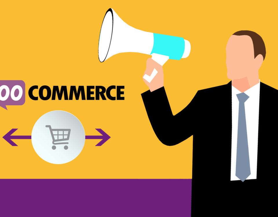 Woocommerce Auktionen Versteigerungen Plugin Shop Wordpress Woo Onlineshop Webshop Modul